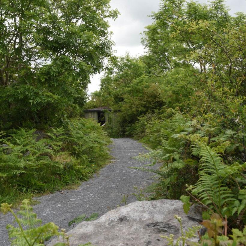 Burren-Nature-Sanctuary-7.jpg