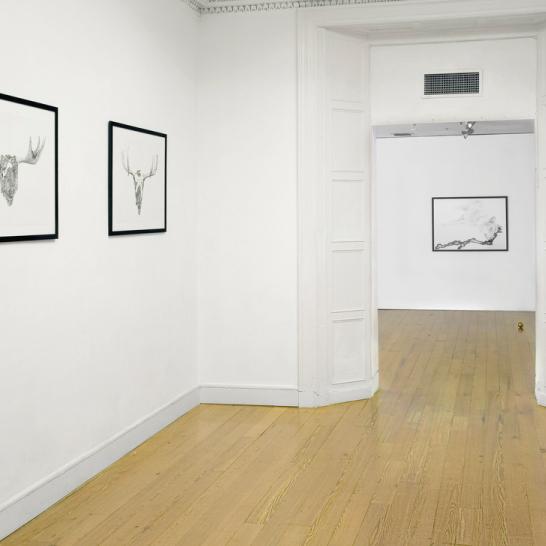 Galway-Arts-Centre-5.jpg