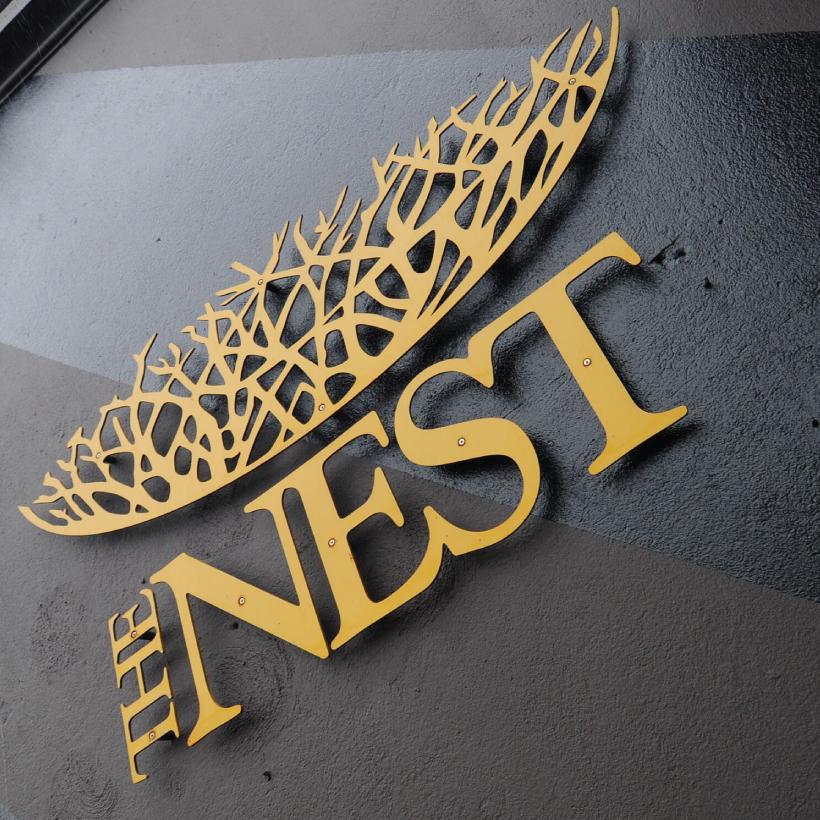 Nest-1.jpg