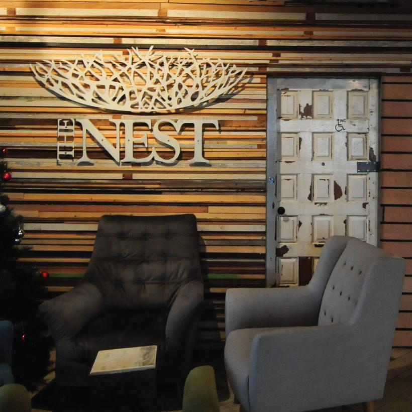 Nest-4.jpg