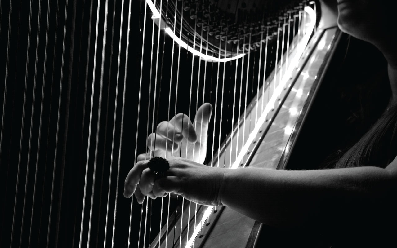 Early Irish Harp Discovery Days 2018 - This is Galway
