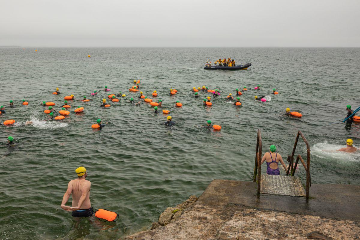 Memorial Day Swimm