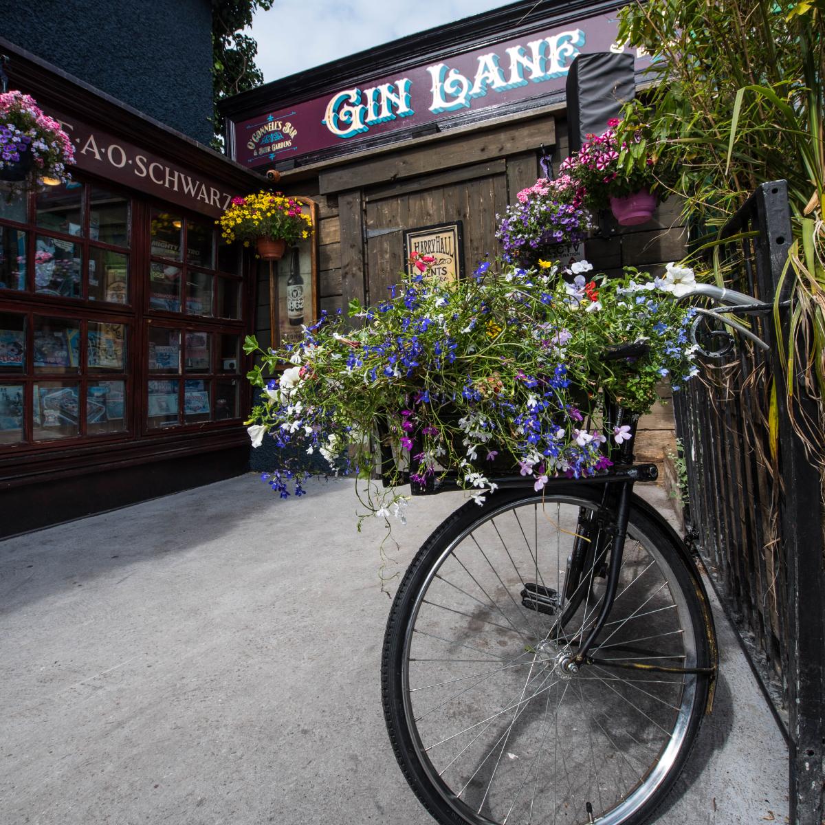 Gin Bars Galway