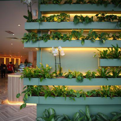 THE-CONNACHT-HOTEL-2020-11.jpg