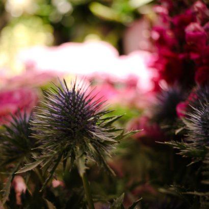Yes-Flowers-11.jpg