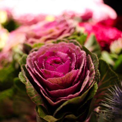Yes-Flowers-12.jpg