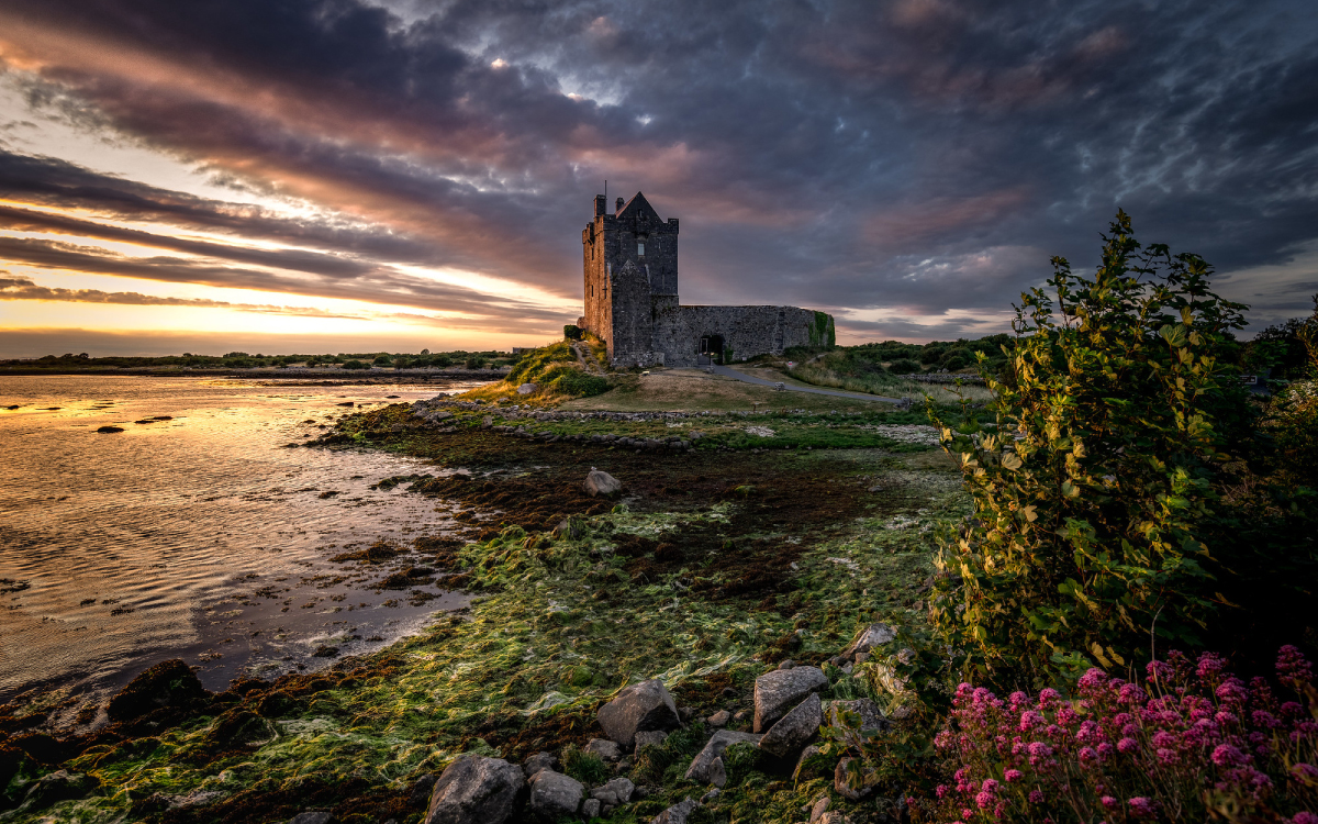 History of Dunguaire Castle Galway