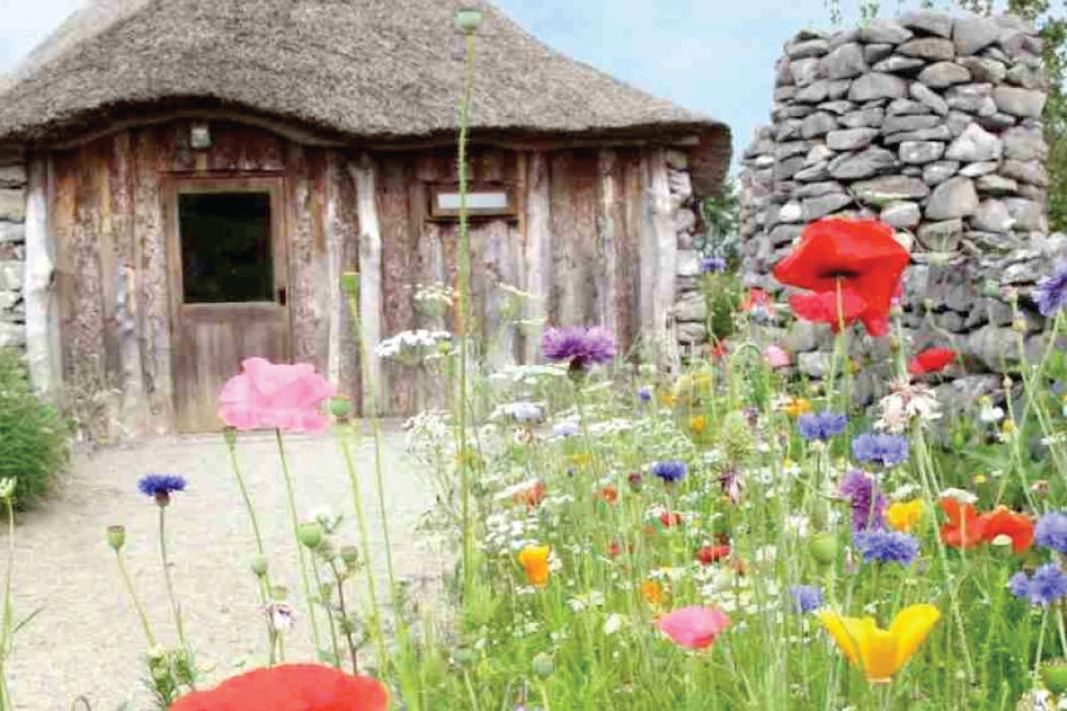 Day Trips in Galway