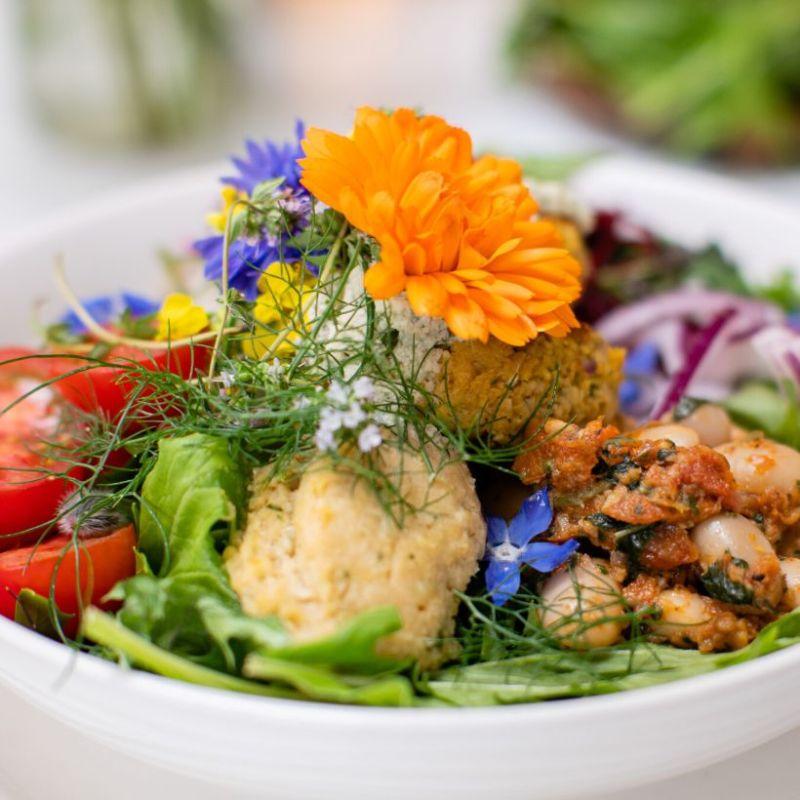 Brigits Garden Veg and Vegan