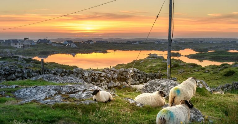 EXPERIENCE GALWAY'S GREAT OUTDOORS