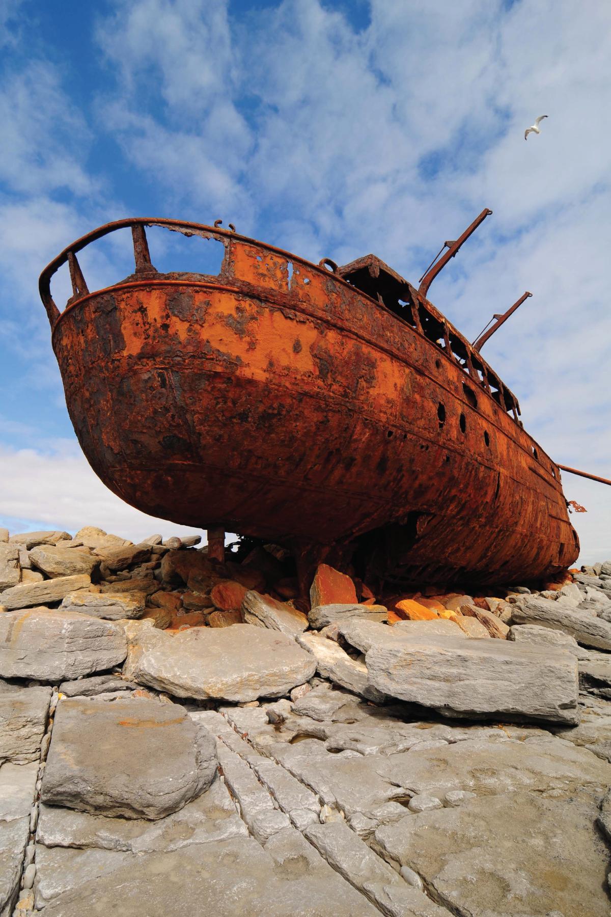 Plassey Wreck