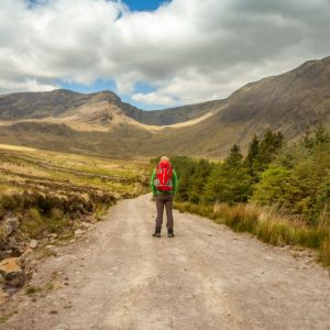 REDISCOVER GALWAY'S BEAUTY WITH THESE NATURE TRAILS
