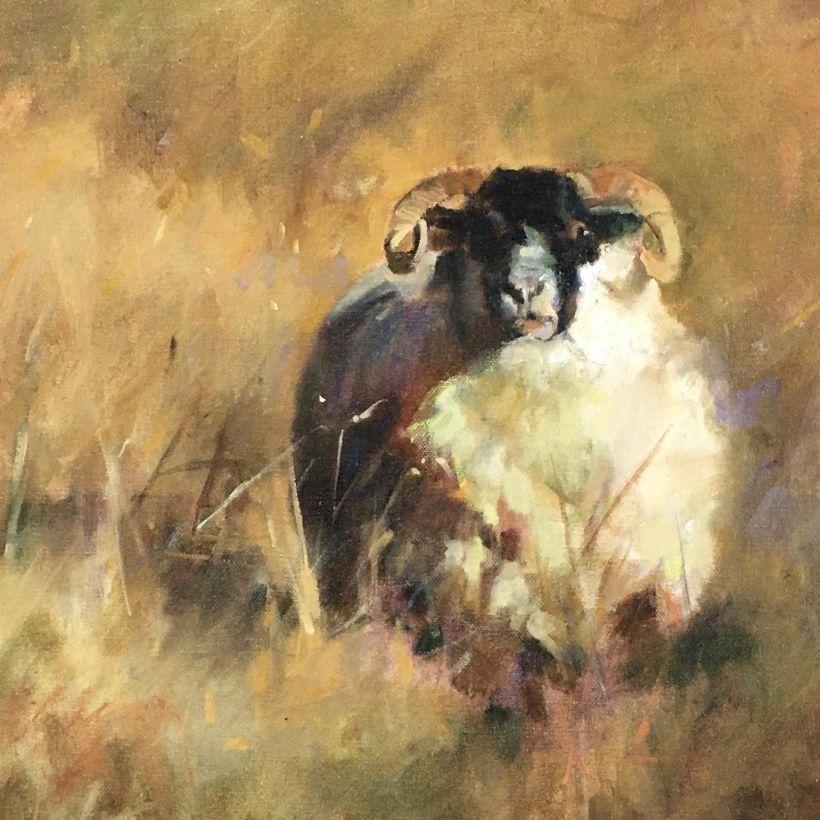 Clifden Whitethorn Gallery