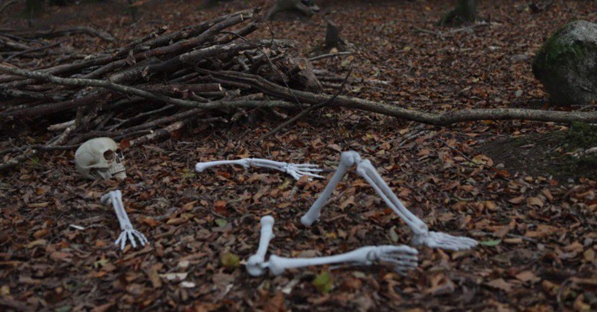 Wildlands-Halloween_4-1.jpg